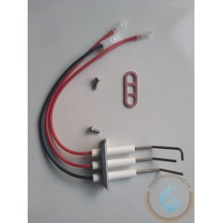 copy of Electrode...